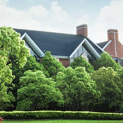 A nice house almost hidden by healthy looking trees