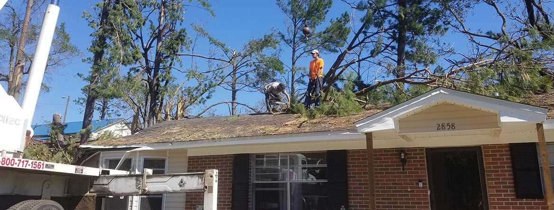 Men on roof of house removing fallen tree debris