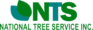 National Tree Service