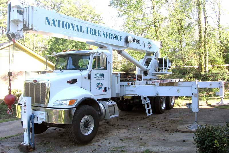 National Tree Service truck parked in front of a house